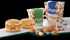 fish1_500